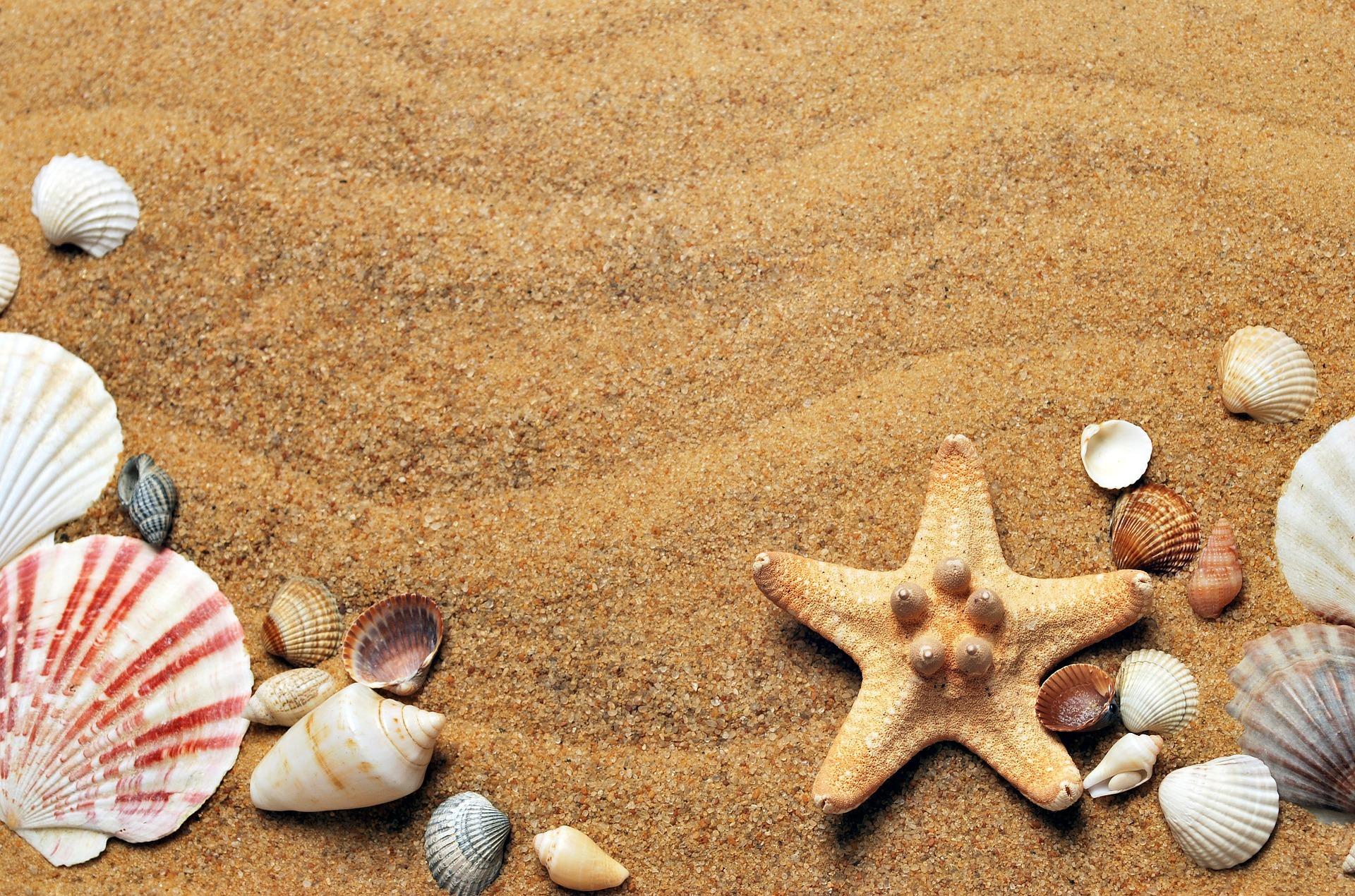 Attività per bambini: Il ritorno dalle vacanze!